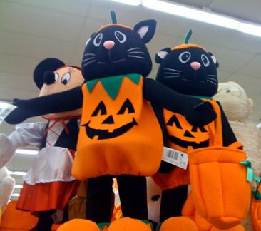 cat jack-o-lanterns
